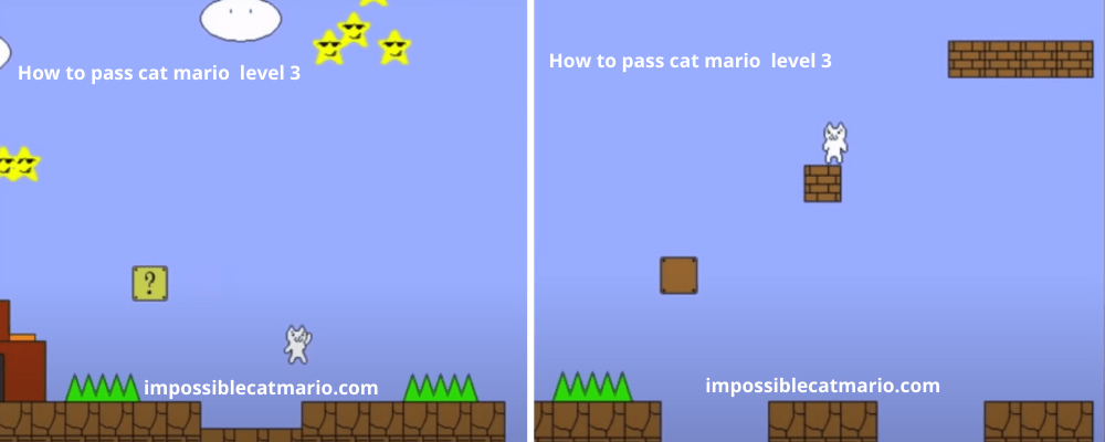 How to pass Cat Mario level 3