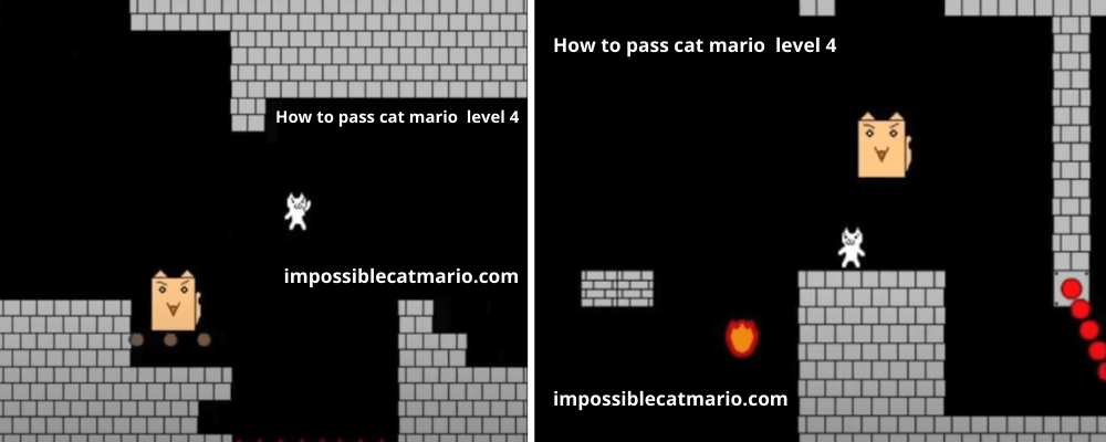 How to pass Cat Mario level 4